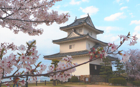丸亀城イメージ